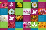 flower_brochure_5